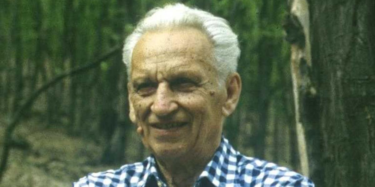 Stefanovits Pál